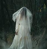 creepy-lone-bride-misty-woods-260nw-4997