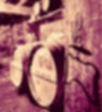 16299157_1801358080125946_8020871866592512741_n_edited_edited.jpg
