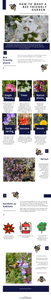 An infographic of how to make a bee friendly garden