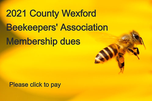 Yearly membership 2021 (individual membership)