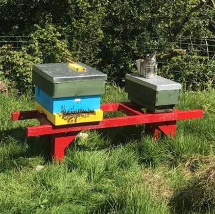 hive and nuc.jpg