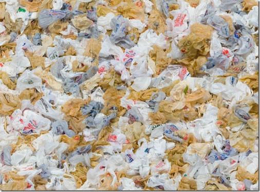 Manifesto pelo direito ao uso das sacolinhas plásticas e afins