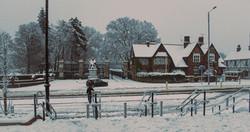 Hatfield Snow 8