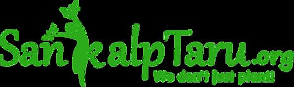st-logo-green.png