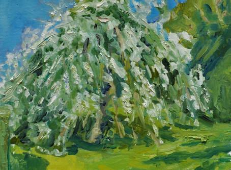 Farmleigh Spring