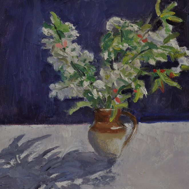Shadow, White and Red Blossom
