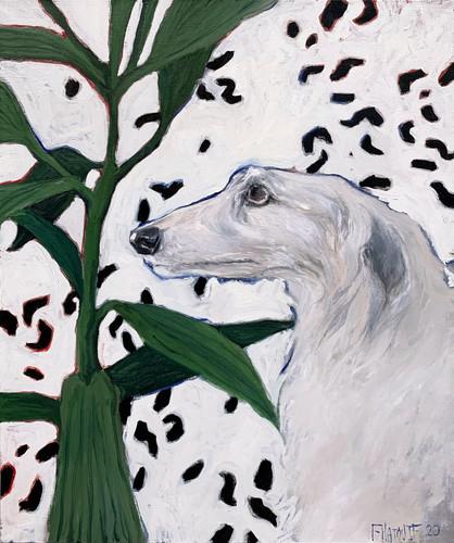 Борзая (The greyhound dog)