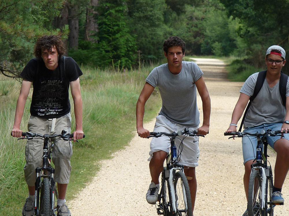 3cyclists.jpg