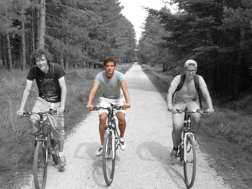 Cycling newforest.jpg