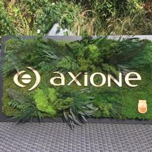 Tableau végétal | tableau végétaux | logo végétal entreprise | Logo personnalisé végétal | Mur végétal sur mesure