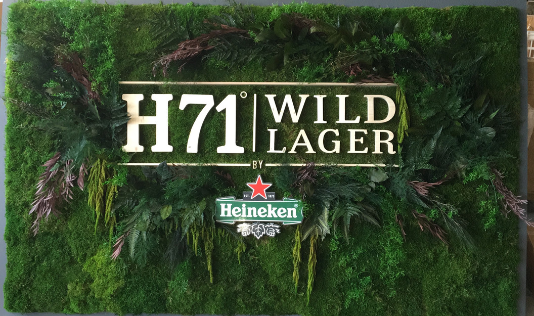 Heineken - copie.jpg