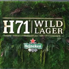 Logo végétal entreprise, H71