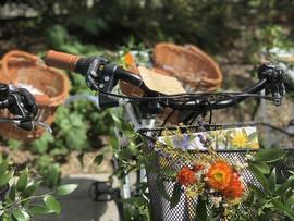 Décoration florale, fleurs évennement, créations végétales évennement.