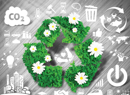 Tips for reducing solid waste - and saving money too!