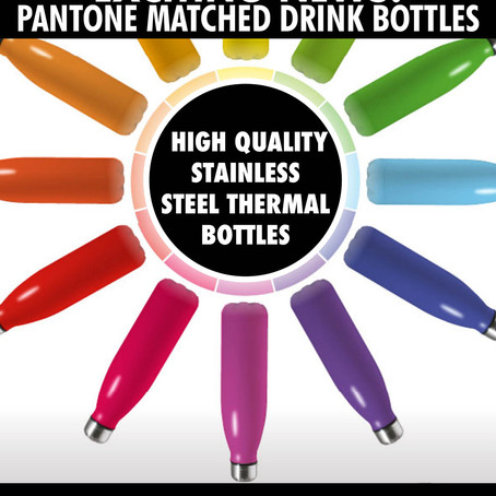 We Supply Pantone Matched Stainless Steel Drink Bottle Promotional Gifts