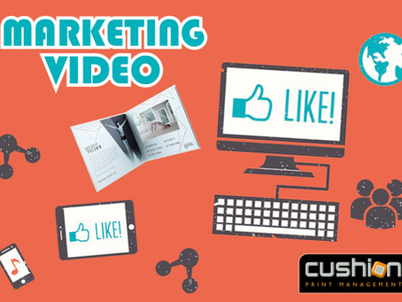 Video Marketing Insights