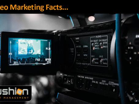 Video Marketing Insights...