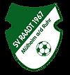 LR_SVRaadt.png