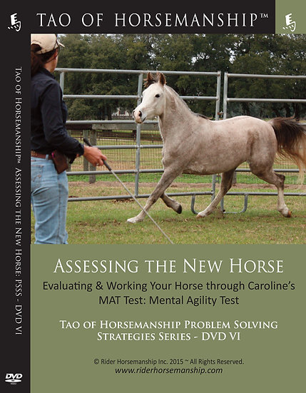 Assessing the New Horse: Problem Solving Strategies Series DVD 6