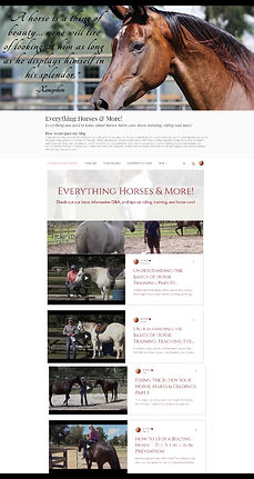 Example of Blog page.jpg