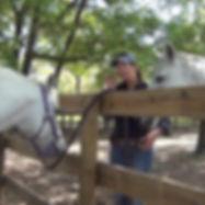11-introducing-horses.jpg