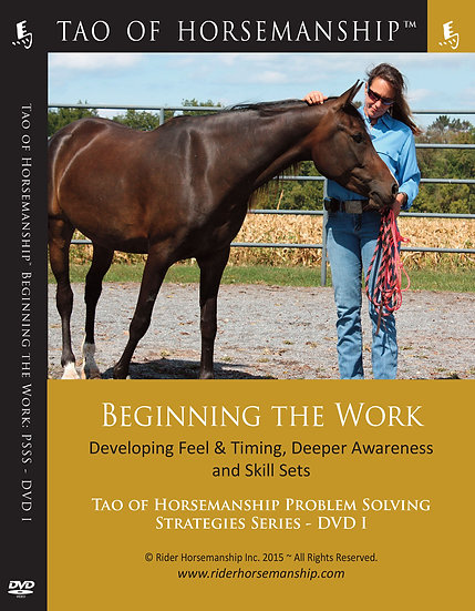 Beginning the Work: Problem Solving Strategies Series DVD 1 – Dual Disc Set