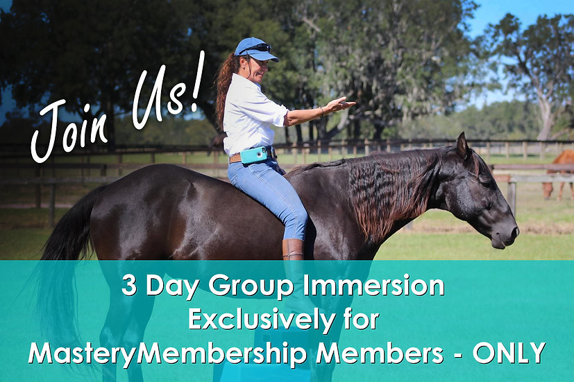 3 Day Group Immersion Exclusively for MasteryMembership Members - ONLY