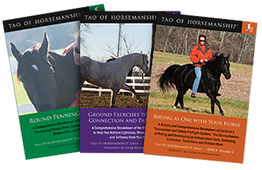Tao of Horsemanship DVD Series Bundle – Volume 2