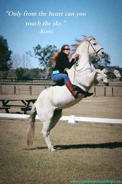 sundance rear quote.jpg
