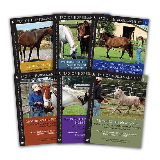 Problem Solving Strategies Series Bundle: DVDs 1-6