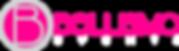 bellisimo-logo.paginaweb.png