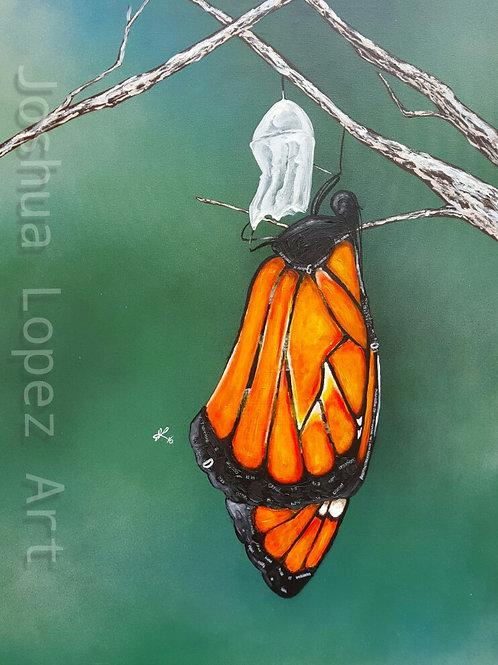 Print - Monarch