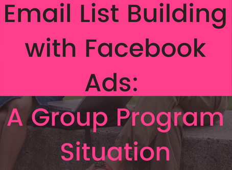 Email List Building with Facebook Ads: A Group Program Situation