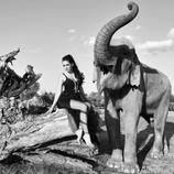 «ВСЕ ВКЛЮЧЕНО»: ОТПУСК ДЛЯ СЛОНОВ – династия Корниловых провела каникулы в дикой природе