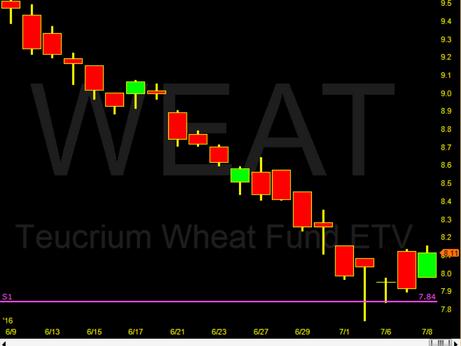 Weat & Corn testing their Ys1 Pivots