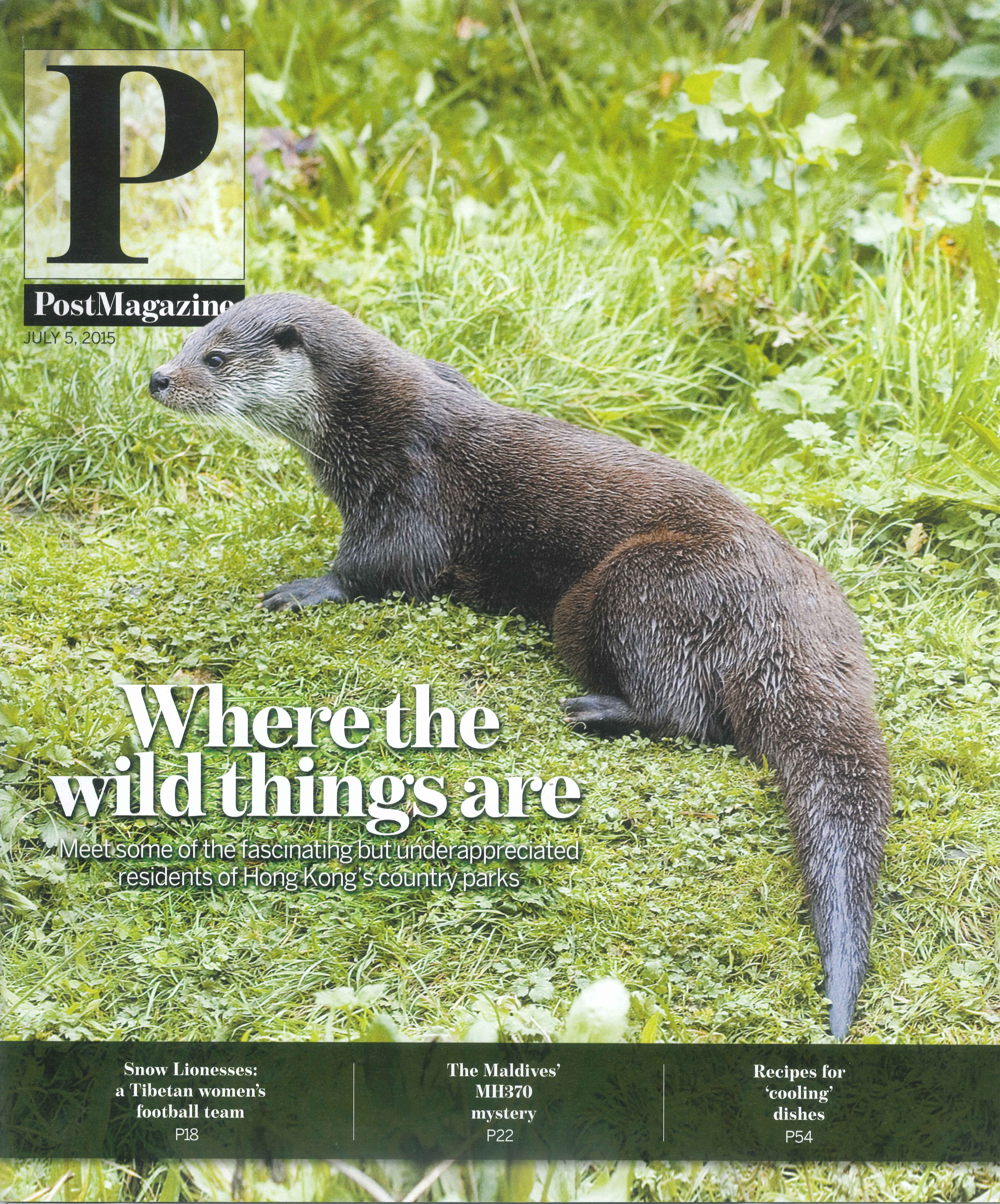 DeerHill Bay PostMagazine