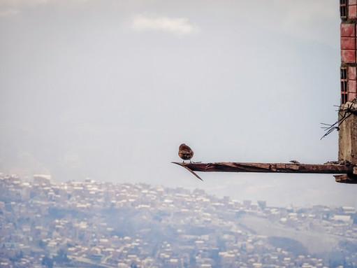 Looking over La Paz