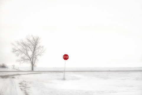 Stop Sign on the Prairies in Winter