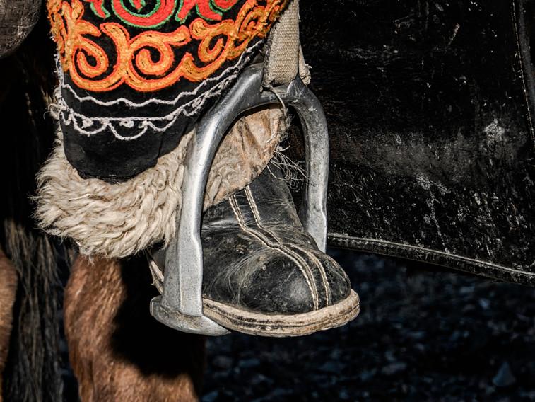 Horse stirrup