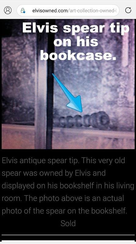 elvis spear in bookshelf.jpg