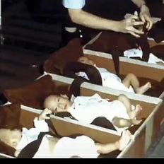 Playboy babis in boxes.jpg