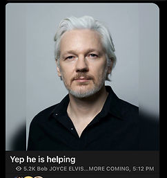 assange from elvis.jpeg
