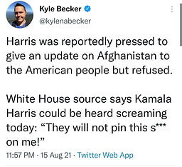kamala they will not pin this shit on me.jpg