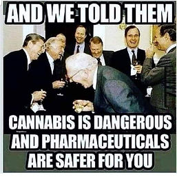 cannibus is bad and pharma is safe.jpeg