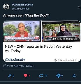 EVER SEEN WAG THE DOG.jpg