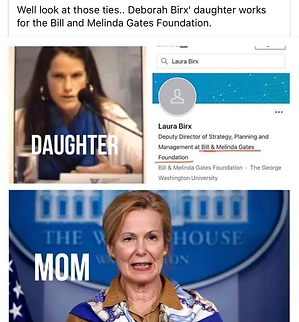 birx daughter works for gates.png