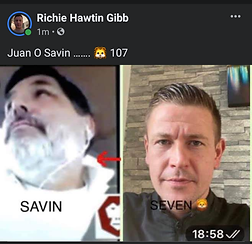 savin seven ritchie hawkin gibb.png
