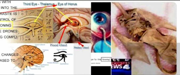 Vril with pineal gland and eyeball.jpg