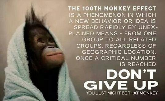100 monkeys meme.jpg