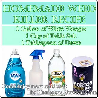 homemade weed killer 4.png